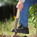 Digging Soil by Konstantin Sutyagin