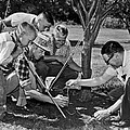 Digging Worms For Fishing by Underwood Archives