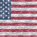 Digital Camo Us Flag by Ron Hedges