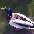Digital Duck by Jo-Anne Gazo-McKim