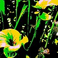 Digital Green Yellow Abstract by Eric  Schiabor