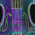 Digital Photograph Of A Viola Violin Middle 3374.03 by M K  Miller