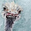 Dimples - An Ostrich by Saundra Lane Galloway