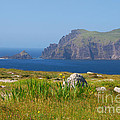 Dingle Coast by Mary Carol Story