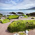 Dingle Coastline by David Lichtneker
