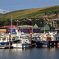 Dingle Harbour County Kerry Ireland by Aidan Moran