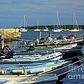 Dingy's Of Mattapoisett  by Amazing Jules