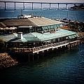 Dining On The Bay by Image Takers Photography LLC - Laura Morgan