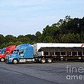 Dinner Time For Truckers by Renee Trenholm