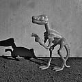 Dino Dark B W by Rob Hans
