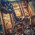 Dinosaur At The Natural History Museum - 02 by Gregory Dyer