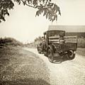 Dirt Drive by Margie Hurwich