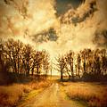 Dirt Road by Jill Battaglia