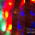 Discotheque by Amy Bynum