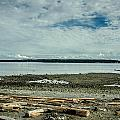 Low Tide Along The Discovery Passage by Roxy Hurtubise