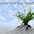 Discover Your True Power by Dreamland Media