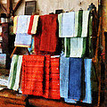 Dish Cloths For Sale by Susan Savad