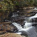 Dismal Falls by Amy Jackson