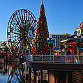 Disney California Adventure Christmas by Tommy Anderson