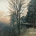 Distant Light by Jutta Maria Pusl