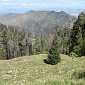 Distant View - Mount Lemmon by Christiane Schulze Art And Photography