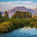 Divide Creek Morning by Inge Johnsson