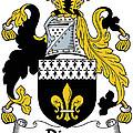 Dixon Coat Of Arms Irish by Heraldry