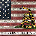 Do Not Tread On Us Flag by Daniel Hagerman