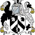 Dobb Coat Of Arms Irish by Heraldry