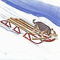 Dobby Sledding Downhill  by P Anthony Visco
