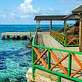 Dock And Tropical Water by Jess Kraft