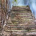 Dock In The Glades by Chuck  Hicks