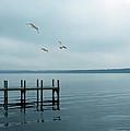 Dock On A Moody Lake by Jill Battaglia