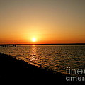 Dock On The Bay Sunset by Sharon Woerner