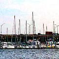 Docked Boats Norfolk Va by Susan Savad