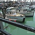 Docked Boats by Phil Campanella