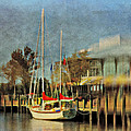Docked by Kathy Jennings