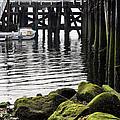 Dockside 2 by JC Findley