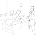 Doctor To Pig by Paul Noth