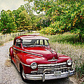 Dodge Country by John Anderson