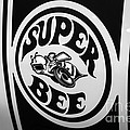 Dodge Super Bee Decal Black And White Picture by Paul Velgos