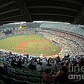 Dodger Stadium by Micah May