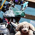 Dog Bike by Henrik Lehnerer