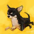 Dog Chihuahua Yellow Splash by Go Van Kampen