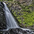 Dog Creek Falls by Erika Fawcett