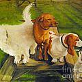 Dog Friends by Carolyn Shireman