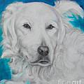 Dog Guus  by Go Van Kampen