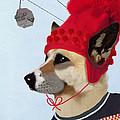 Dog In A Ski Jumper by Kelly McLaughlan