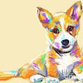 Dog Jerry by Go Van Kampen