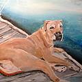 Dog On Dock by Michael Litvack